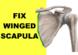 winged scapula exercises winged scapula fix